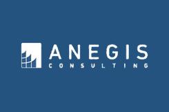Anegis Consulting